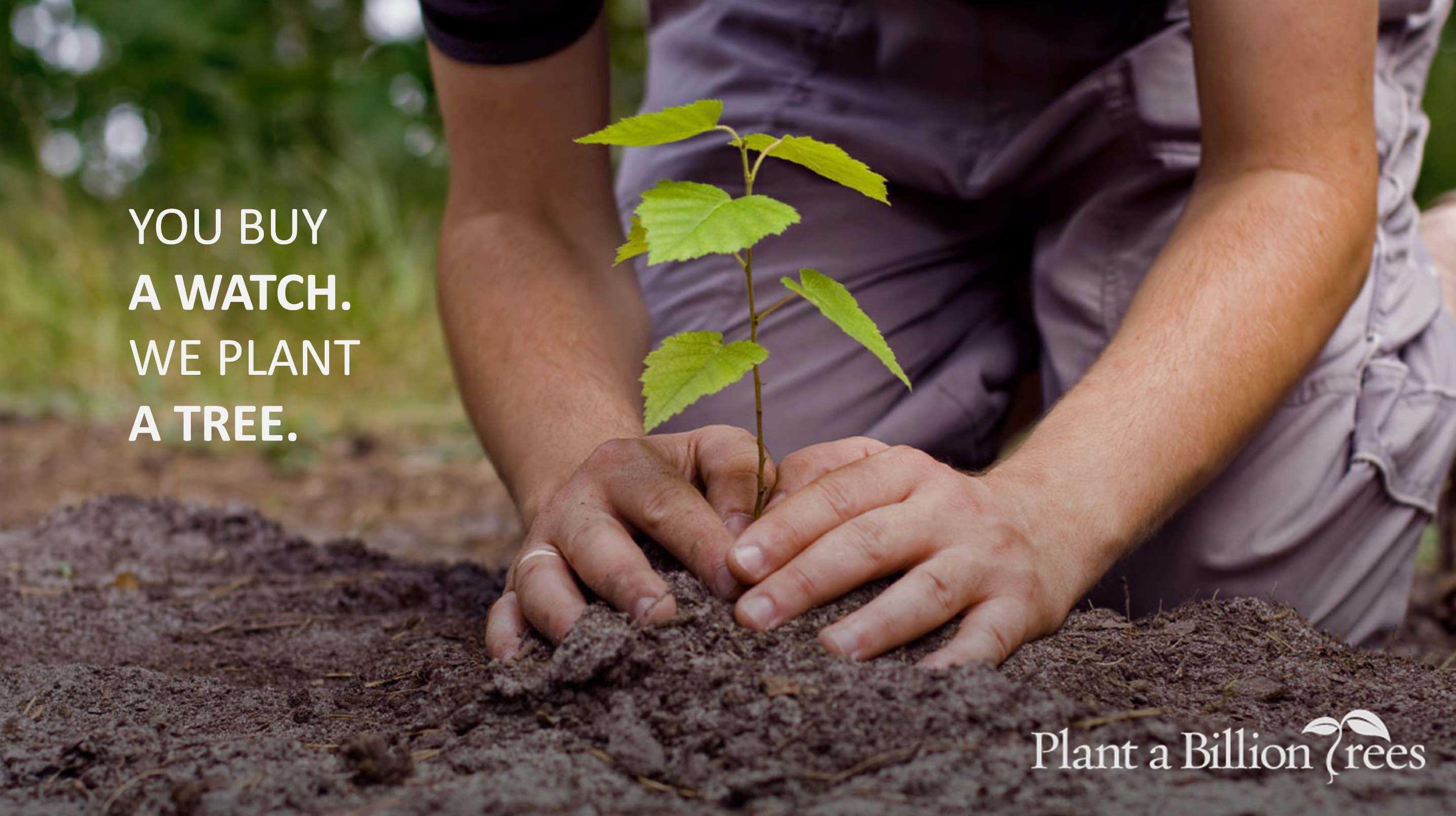 Voor elk verkocht houten horloge planten wij een boom